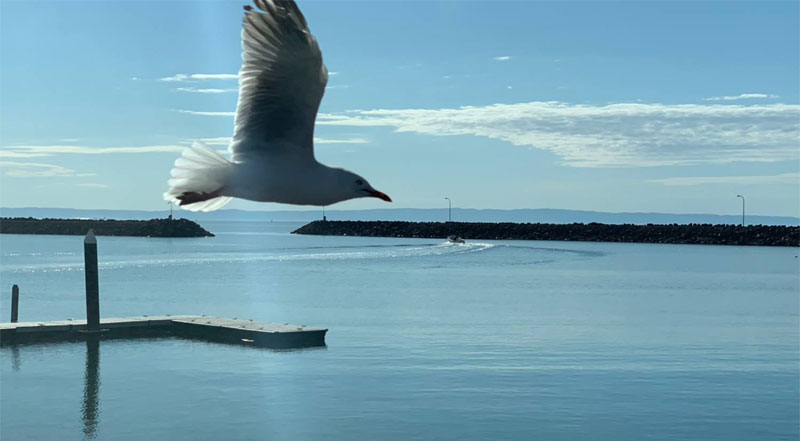 Whyalla Travel and Cruise